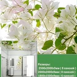 Панель для потолка № PN-06 1800x1500 мм