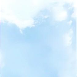 Потолочные панели ПВХ № PPN-4123