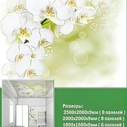 ПВХ панели для потолка Novita, Белая орхидея