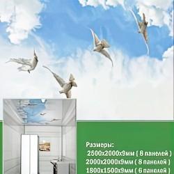 ПВХ панели для потолка Novita, Высота